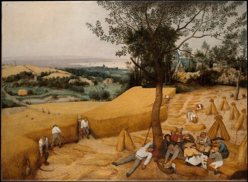 Brueghel moisson